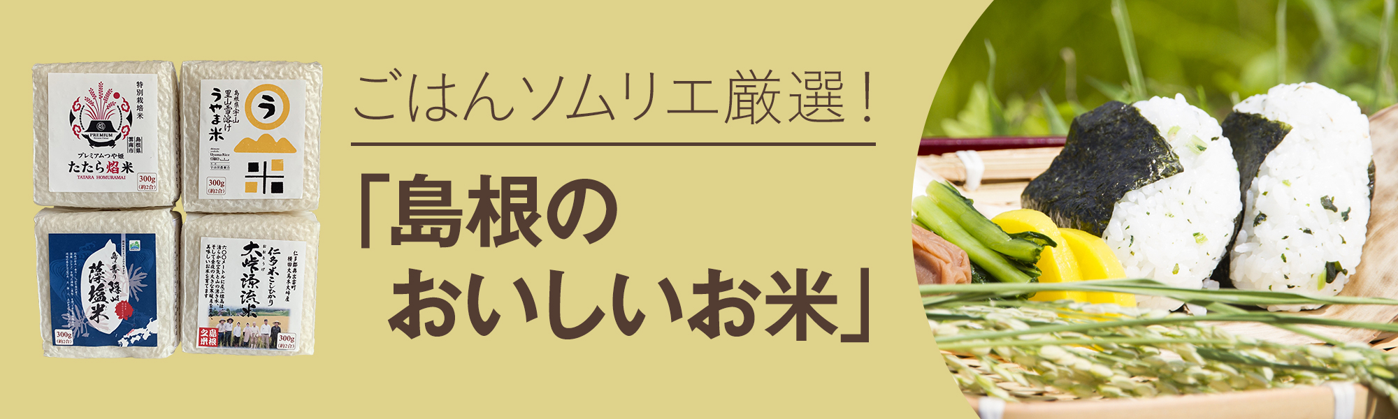 ごはんソムリエ厳選!「島根のおいしいお米」