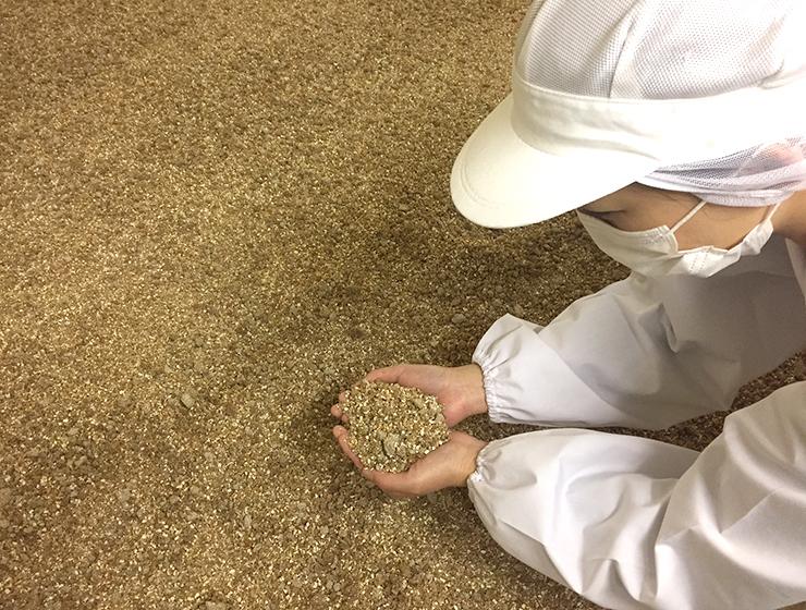 (株)高砂醤油本店の醤油の仕込み