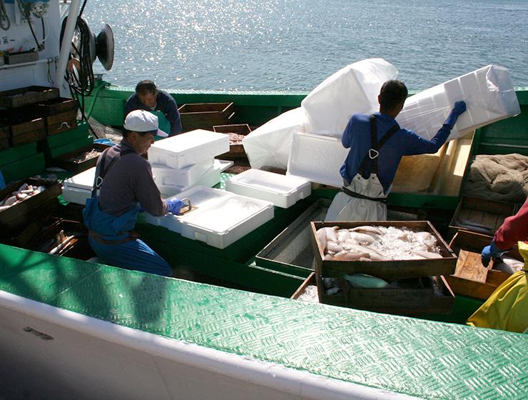 1日漁の様子