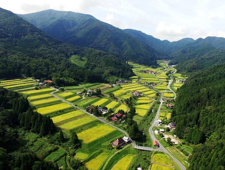 大峠源流米の産地