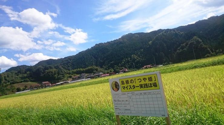 たたら餡米の産地